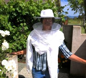BeeSwarm2 001